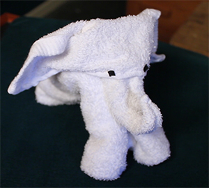 Magic Towel Elephant